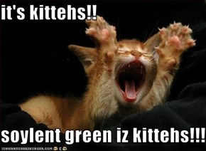 it's kittehs!!  soylent green iz kittehs!!!