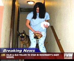 Breaking News - CUJO & OLD YELLER TO STAR IN ROSEMARY'S BABY SEQUEL