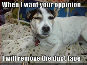 When I want your oppinion  I will remove the duct tape