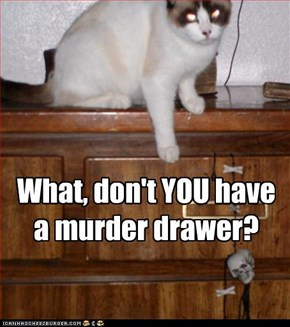 What, don't YOU have a murder drawer?