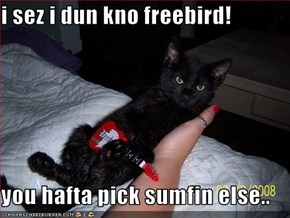 i sez i dun kno freebird!  you hafta pick sumfin else..
