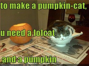 to make a pumpkin-cat, u need a lolcat  and a pumpkin