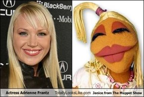 Actress Adrienne Frantz Totally Looks Like Janice from The Muppet Show
