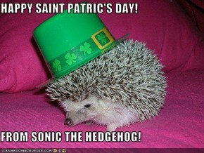 HAPPY SAINT PATRIC'S DAY!  FROM SONIC THE HEDGEHOG!