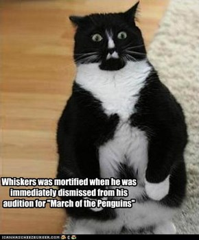 "Whiskers was mortified when he was immediately dismissed from his audition for ""March of the Penguins"""