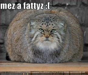 mez a fattyz :[