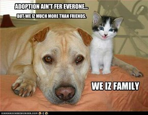 ADOPTION AIN'T FER EVERONE...