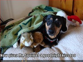 Mr. Squirrel