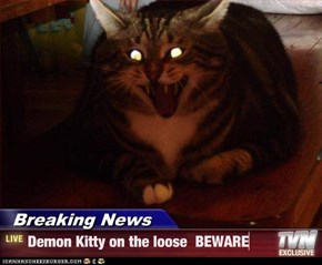 Breaking News - Demon Kitty on the loose  BEWARE