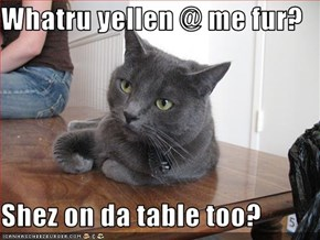 Whatru yellen @ me fur?  Shez on da table too?