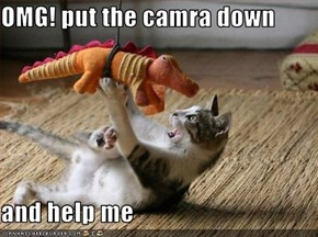 OMG! put the camra down  and help me