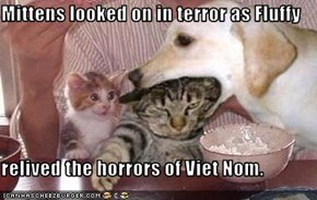 Mittens looked on in terror as Fluffy  relived the horrors of Viet Nom.