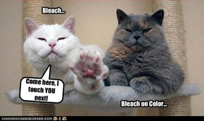 Bleach...