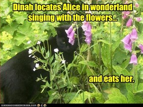 Dinah locates Alice in wonderland singing with the flowers...