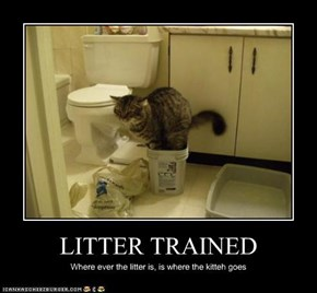 LITTER TRAINED
