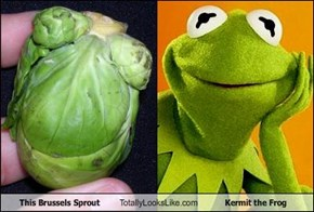 This Brussels Sprout Totally Looks Like Kermit the Frog