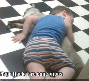 Nap attacks are contagious