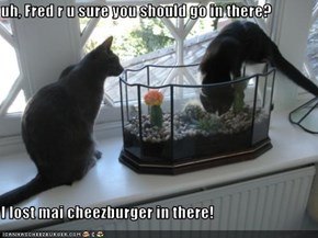uh, Fred r u sure you should go in there?  I lost mai cheezburger in there!