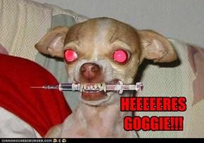 HEEEEERES GOGGIE!!!