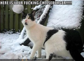 HERE IS YOUR FUCKING CHEESEBURGER!!!!!