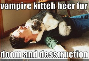 vampire kitteh heer fur   doom and desstruction