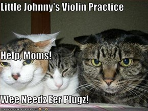 Little Johnny's Violin Practice Help, Moms!   Wee Needz Eer Plugz!