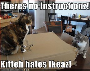 Theres no Instructionz!!  Kitteh hates Ikeaz!