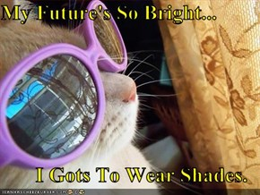 My Future's So Bright...  I Gots To Wear Shades.