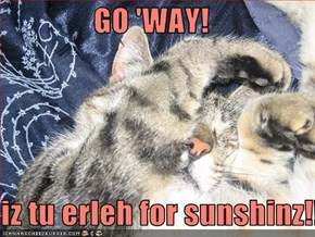 GO 'WAY!  iz tu erleh for sunshinz!!!