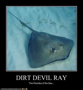 DIRT DEVIL RAY