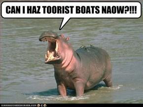 CAN I HAZ TOORIST BOATS NAOW?!!!