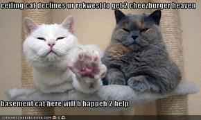 ceiling cat declines ur rekwest to get 2 cheezburger heaven  basement cat here will b happeh 2 help