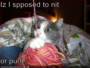 Iz I spposed to nit  or purl?
