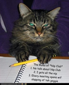 The Rules of Nip Club