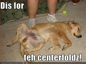 Dis for  teh centerfoldz!