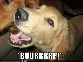 *BUURRRRP!*