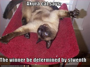 Akura cat says:  The winner be determined by stwenth