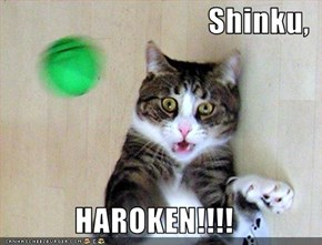Shinku,  HAROKEN!!!!