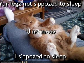 Yur legz not s'ppozed to sleep U no moov I s'ppozed to sleep