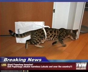 Breaking News - Giant Paperbag Invasion! Evil Paperbags attakin harmless Lolcatz awl over the country!!!