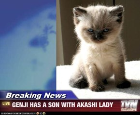 Breaking News - GENJI HAS A SON WITH AKASHI LADY