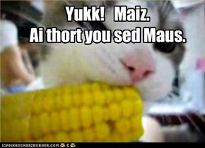 Yukk!   Maiz. Ai thort you sed Maus.