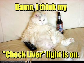 "Damn, I think my     ""Check Liver"" light is on."