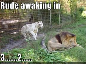 Rude awaking in  3.......2......
