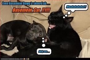 Even Basement Dawg iz skeerd ub . . .