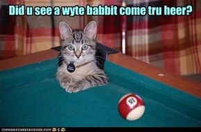 Did u see a wyte babbit come tru heer?