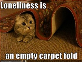 Loneliness is  an empty carpet fold