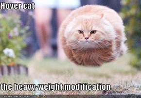 Hover cat  the heavy-weight modification