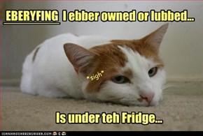 EBERYFING  I ebber owned or lubbed...