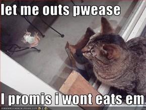 let me outs pwease  I promis i wont eats em